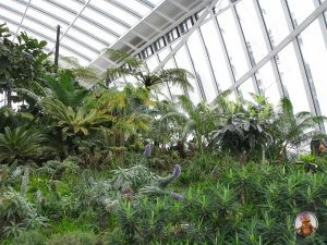 Jardín del Sky Garden