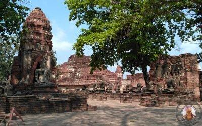 Organización de la visita a Ayutthaya