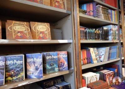 Harry Potter en Librería Lello e Irmao