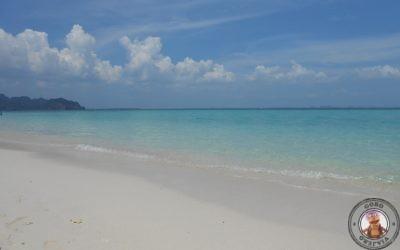Excursión 4 islas y snorkel nocturno con Thalassa Tour