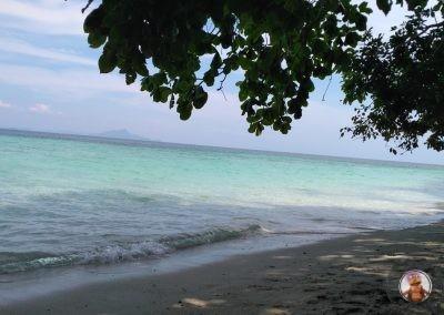 Vistas de la playa durante la comida en Chicken Island