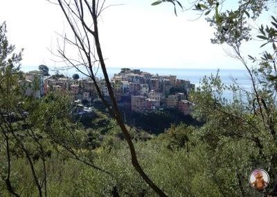 Corniglia - Vistas desde el comienzo del sendero entre Vernazza y Corniglia