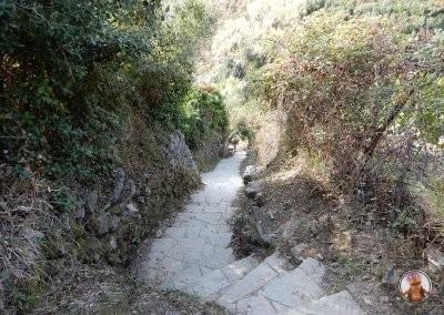 Tramo de bajada hacia Monterosso