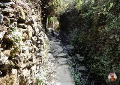Ultima parte de bajada llegando a Monterosso