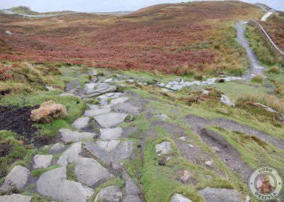 Camino de piedra por el que se puede subir a la parte alta de los acantilados