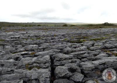 The Burren, un paisaje diferente en Irlanda
