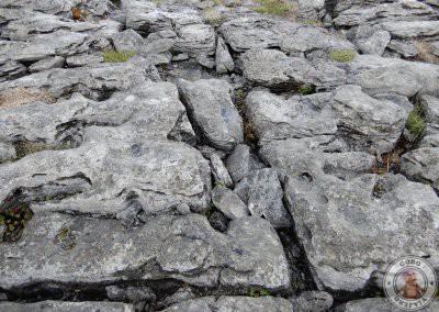 The Burren, significa lugar pedregoso