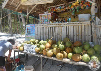 Puesto de bebida y cocos en Papaya Beach