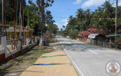 Recorrido por Bohol en un día con conductor privado