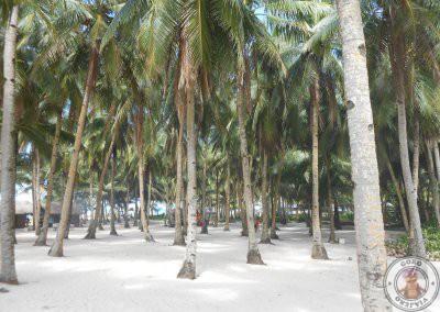 Interior de Daku Island