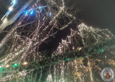 Mercados de Navidad de Friburgo de Brisgovia