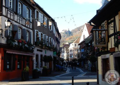Recorrido por Ribeauvillé en Alsacia