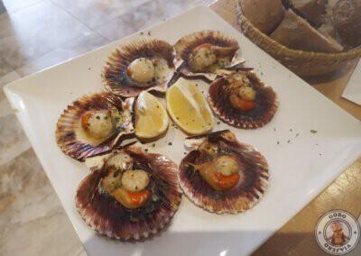 Comer en Portonovo - Zamburiñas